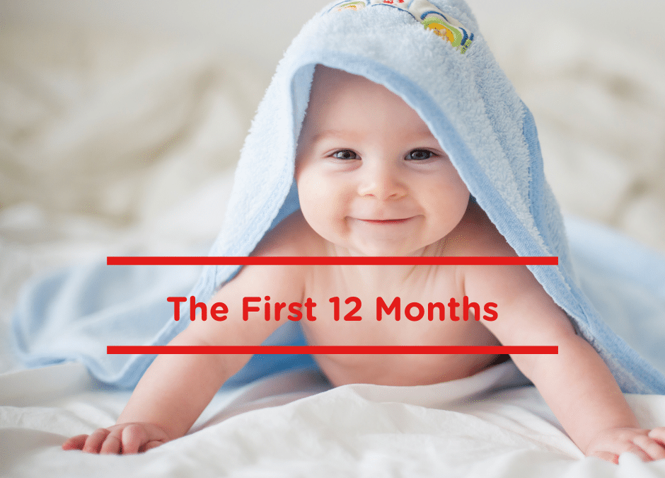 The first 12 months